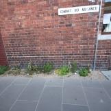 Godfrey Street (10)