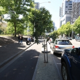 The treed median separates bikes from the flow of traffic on La Trobe Street