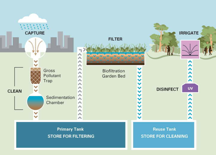 The stormwater harvesting system collects water from drains, cleans it using biofiltration and stores it for irrigating the garden.