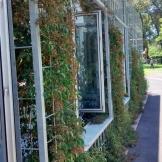 facade_greener