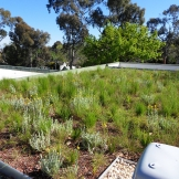 Green roof on a child care centre at Minifie Park
