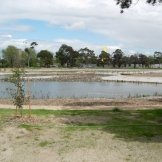 The treatment wetland at completion of construction